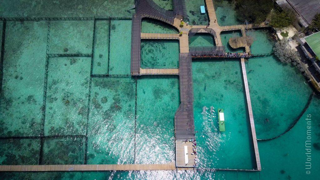 cartagena islas del rosario oceanario drone